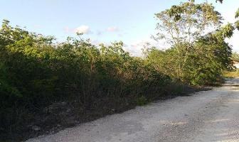 Foto de terreno habitacional en venta en  , dzitya, mérida, yucatán, 7007157 No. 02