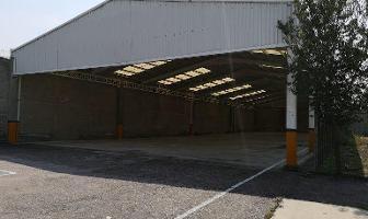 Foto de nave industrial en renta en  , ejidal el pino, la paz, méxico, 12263805 No. 01