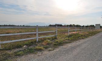 Foto de terreno habitacional en venta en ejido casas viejas 0 , cadereyta, cadereyta jiménez, nuevo león, 16816692 No. 01