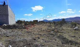 Foto de terreno habitacional en venta en ejido la machorra , el rosario, el marqués, querétaro, 12281771 No. 01