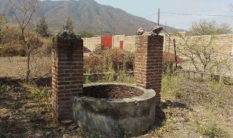 Foto de terreno habitacional en venta en el candado , ixtlahuacan de los membrillos, ixtlahuacán de los membrillos, jalisco, 0 No. 01