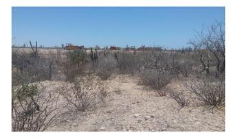 Foto de terreno habitacional en venta en  , el centenario, la paz, baja california sur, 10963838 No. 01