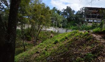 Foto de terreno habitacional en venta en el manguito , valle de bravo, valle de bravo, méxico, 7091803 No. 01