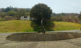 Foto de terreno habitacional en venta en el santuario , valle de bravo, valle de bravo, méxico, 0 No. 01