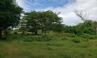 Foto de terreno habitacional en venta en entrando por calle amazonas 00, el tejar, medellín, veracruz de ignacio de la llave, 0 No. 01