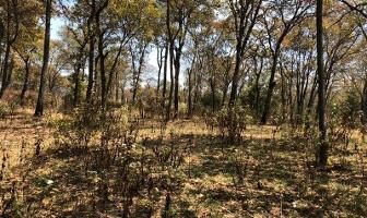 Foto de terreno habitacional en venta en  , espíritu santo, jilotzingo, méxico, 11817436 No. 01