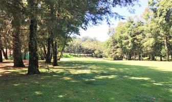 Foto de terreno habitacional en venta en fraccionamiento rancho avandaro , valle de bravo, valle de bravo, méxico, 12052733 No. 01
