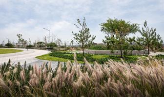 Foto de terreno habitacional en venta en fray junípero serra , fray junípero serra, querétaro, querétaro, 16338046 No. 01