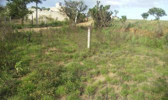 Foto de terreno habitacional en venta en guadalupe victoria 00, cuilápam de guerrero centro, cuilápam de guerrero, oaxaca, 8874929 No. 02