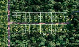 Foto de terreno habitacional en venta en holistika , tulum centro, tulum, quintana roo, 0 No. 01