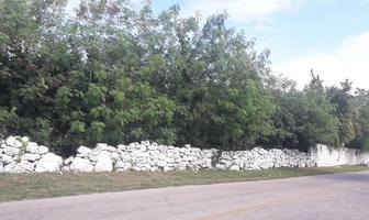Foto de terreno habitacional en venta en  , hunucmá, hunucmá, yucatán, 19216452 No. 01