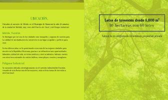 Foto de terreno habitacional en venta en  , hunucmá, hunucmá, yucatán, 6518100 No. 01