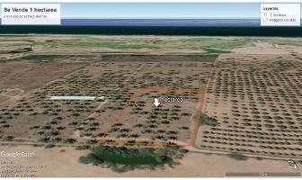 Foto de terreno habitacional en venta en  , isla de la piedra, mazatlán, sinaloa, 10269378 No. 01