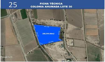 Foto de terreno habitacional en venta en  , islas agrarias b, mexicali, baja california, 12813359 No. 01