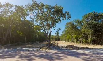 Foto de terreno habitacional en venta en itzamna , aldea zama, tulum, quintana roo, 11163870 No. 01