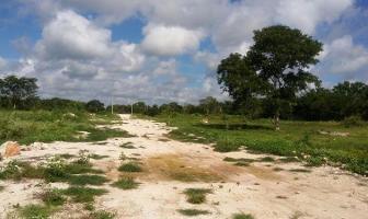 Foto de terreno habitacional en venta en  , izamal, izamal, yucatán, 11259532 No. 01