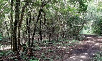 Foto de terreno habitacional en venta en  , izamal, izamal, yucatán, 16974489 No. 01