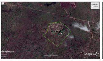 Foto de terreno habitacional en venta en  , izamal, izamal, yucatán, 17511678 No. 01