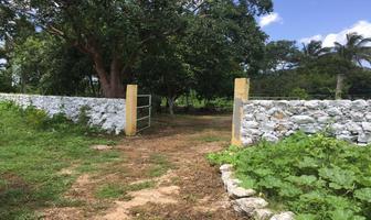 Foto de terreno habitacional en venta en  , izamal, izamal, yucatán, 17831156 No. 01