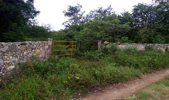 Foto de terreno habitacional en venta en  , izamal, izamal, yucatán, 17835919 No. 01