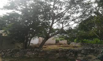 Foto de terreno habitacional en venta en  , izamal, izamal, yucatán, 19176178 No. 01