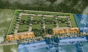 Foto de terreno habitacional en venta en  , izamal, izamal, yucatán, 20326003 No. 01