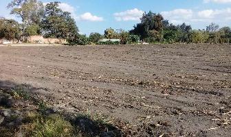 Foto de terreno habitacional en venta en jacarandas , cuautlixco, cuautla, morelos, 2966216 No. 01