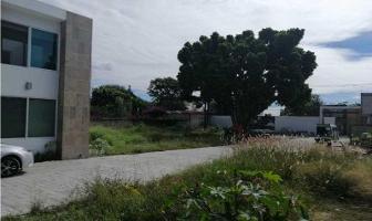 Foto de terreno habitacional en venta en  , jardines de cuernavaca, cuernavaca, morelos, 12646120 No. 01
