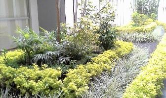 Foto de departamento en venta en jardines del pedregal , jardines del pedregal, álvaro obregón, distrito federal, 0 No. 01