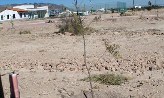Foto de terreno habitacional en venta en  , jesús maría, villa de reyes, san luis potosí, 11847245 No. 01