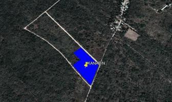 Foto de terreno habitacional en venta en  , kanasin, kanasín, yucatán, 11546882 No. 01