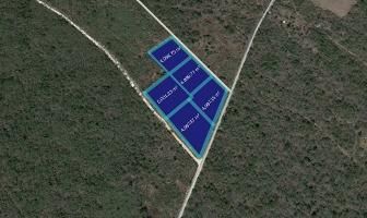 Foto de terreno habitacional en venta en  , kanasin, kanasín, yucatán, 14158348 No. 01