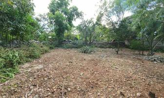 Foto de terreno habitacional en venta en  , kanasin, kanasín, yucatán, 0 No. 01