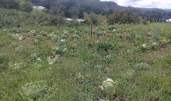 Foto de terreno habitacional en venta en kilometro 112 segunda fraccion municipio de teopisca , teopisca, teopisca, chiapas, 14209007 No. 01