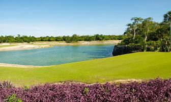 Foto de terreno habitacional en venta en kilometro 388 , cancún (internacional de cancún), benito juárez, quintana roo, 0 No. 01