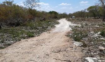 Foto de terreno habitacional en venta en  , komchen, mérida, yucatán, 7018615 No. 03