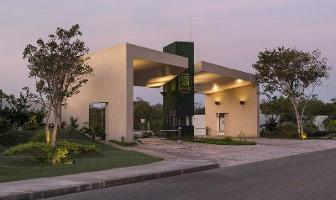 Foto de terreno habitacional en venta en  , komchen, mérida, yucatán, 7035703 No. 01