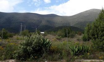 Foto de terreno habitacional en venta en la escondida , los lirios, arteaga, coahuila de zaragoza, 0 No. 01