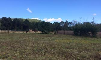 Foto de terreno habitacional en venta en la palma, san mateo acatitlán , valle de bravo, valle de bravo, méxico, 6804527 No. 01