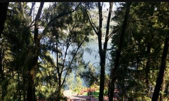 Foto de terreno habitacional en venta en la peña , valle de bravo, valle de bravo, méxico, 6442102 No. 01