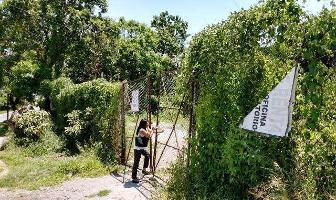 Foto de terreno habitacional en venta en  , las fuentes, jiutepec, morelos, 11712360 No. 01