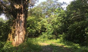 Foto de terreno habitacional en venta en las higueras campestre lote 15 manzana 006 , chivato, villa de álvarez, colima, 12742012 No. 01