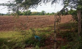 Foto de terreno habitacional en venta en  , las jarretaderas, bahía de banderas, nayarit, 6715825 No. 01
