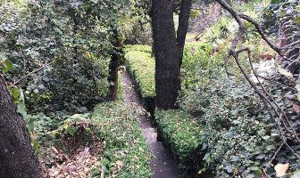 Foto de departamento en renta en loma de tlapexco , lomas de vista hermosa, cuajimalpa de morelos, distrito federal, 4414115 No. 01