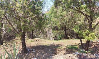 Foto de terreno habitacional en venta en  , loma sol, cuernavaca, morelos, 11777447 No. 01