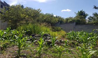 Foto de terreno habitacional en venta en  , lomas de jiutepec, jiutepec, morelos, 18099249 No. 01