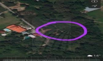 Foto de terreno habitacional en venta en  , los adobes, montemorelos, nuevo león, 4639038 No. 01