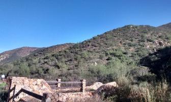 Foto de terreno habitacional en venta en los encinares , san antonio de las minas, ensenada, baja california, 0 No. 01