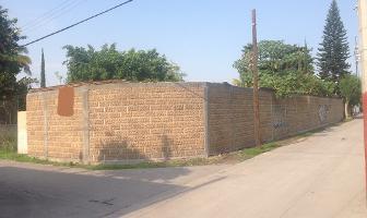 Foto de terreno habitacional en venta en los pinos , lázaro cárdenas, xochitepec, morelos, 4023906 No. 02