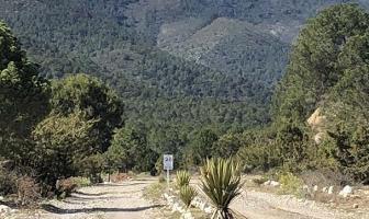 Foto de terreno habitacional en venta en lote 3 manzana 8 , el pino gordo, arteaga, michoacán de ocampo, 11916954 No. 01